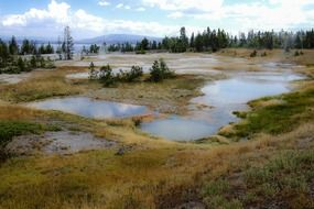 geothermal ponds in the yellowstone national park