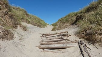 abandoned walkpath in north sea dunes