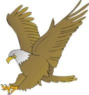 drawing of an eagle with spread wings