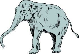 elephant drawed