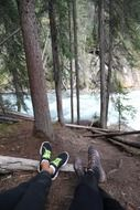 hikers having rest in a forest, canada, banff