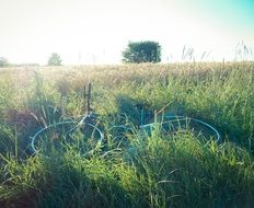 bike on a green meadow