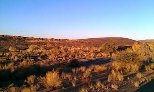 panorama of hunting reserve in South Africa