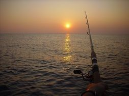 Fishing rod in the summer