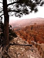 scenery of bryce canyon