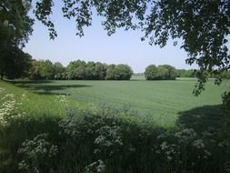 panoramic view of picturesque countryside on a sunny day