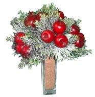 christmas decorations with apples