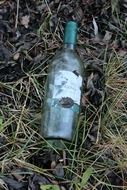 empty glass bottle among the dry leaves