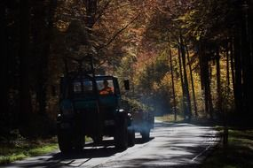 road unimog vice forest