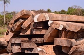 natural wood timber