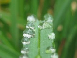 terrific water droplets