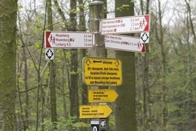 direction signs in the forest