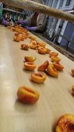 processing of ripe peaches
