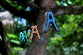 clothespins on a rope near green trees