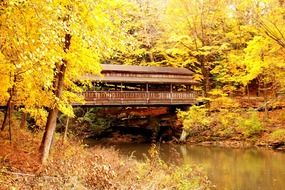 golden autumn covered bridge