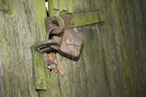 padlock in the forest lodge