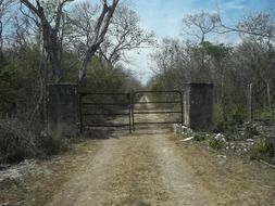 old iron gate in the countryside