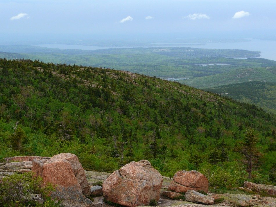 landscape of Acadia National Park