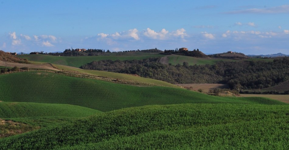 green fields in scenic countryside, italy,Sienna