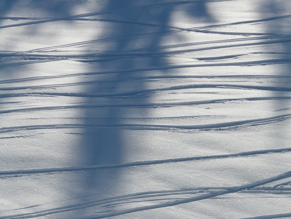 curves tracks on the snow in the shade