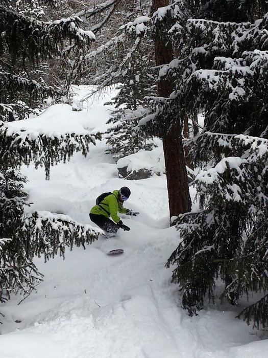 Snowboarder in the woods in the Monte Rosa