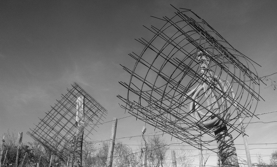black-and-white image of the antennas