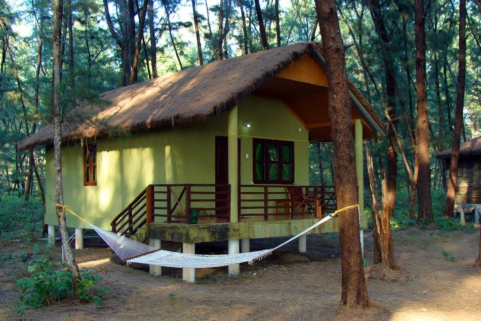 wooden house with a hammock in the woods of India