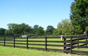 Fence in the countryside in Florida