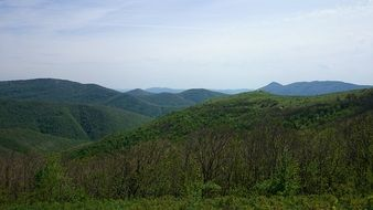 panorama of mountains covered with green forests
