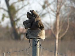 glove hanging on a pole