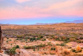 Landscape of big bend national park