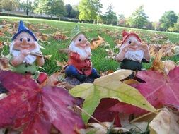 gnomes in autumn leaves