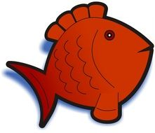Orange fish clipart