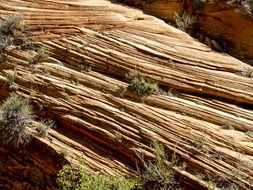 rock erosion in the zion national park