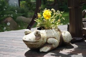 flower pot in form of a frog