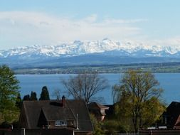 view of Lake Constance in the background of snow-covered Alps