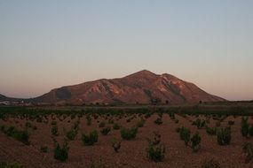 panorama of the steppe and mountains in Murcia, Spain