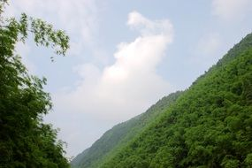 the scenery of green mountains