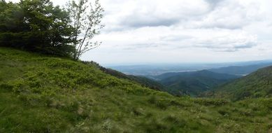 panorama of black forest in the rhine valley
