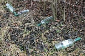 empty bottles on the side of the road