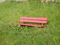 red bench in a green meadow