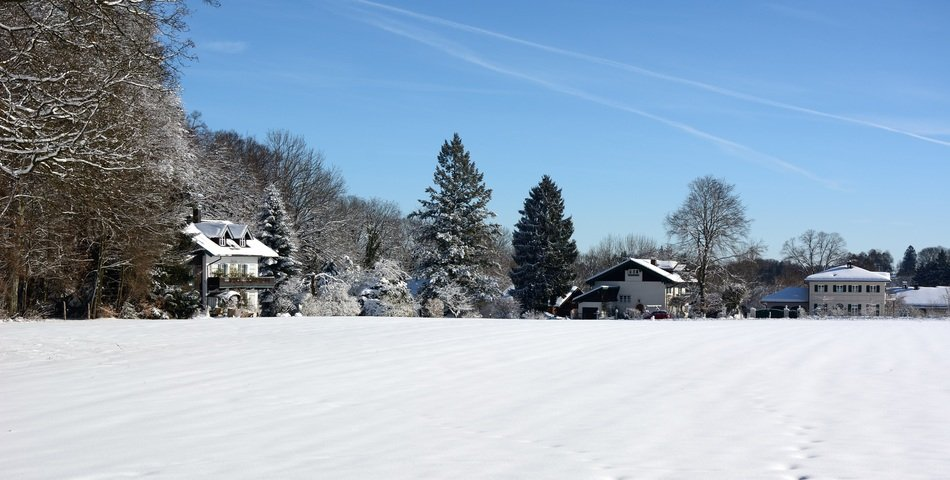 winter snow landscape in clear weather