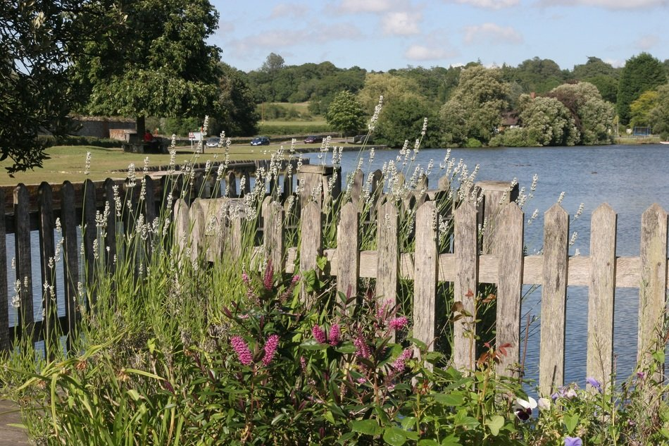 wooden fence by the lake in england on a sunny day