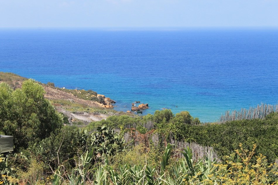 Mediterranean coast with green trees