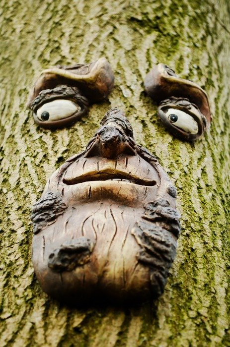 Face on the wood