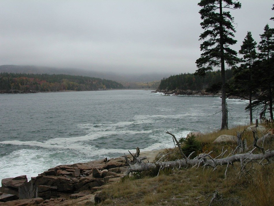 landscape of wild coast at cloudy day, usa, maine, acadia national park