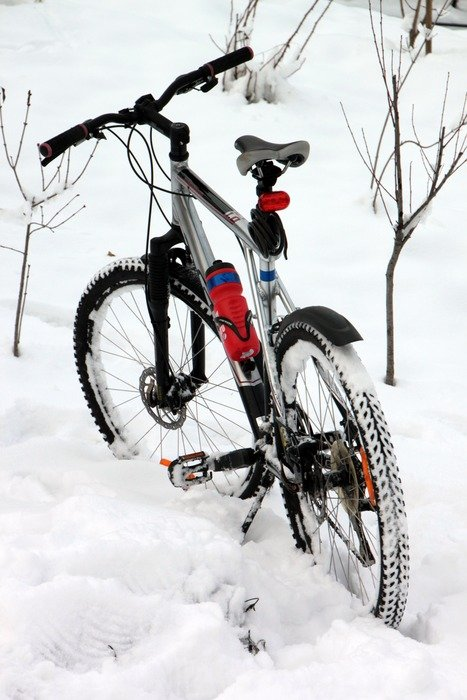 bike stands in the snow