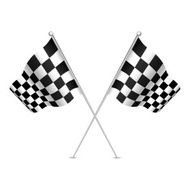 Racing flag (checkered flag) Vector illustration