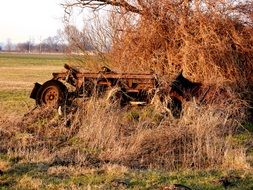 old rusty car in dry grass