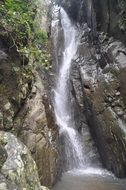 waterfall nature bali forest wild